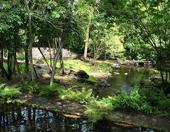 Els viatgers de la gran anaconda. La Guyana