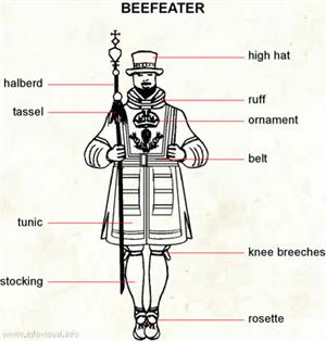 Beefeater  (Visual Dictionary)