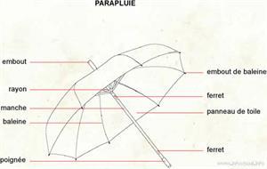 Parapluie (Dictionnaire Visuel)
