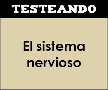 El sistema nervioso. 3º ESO - Biología (Testeando)