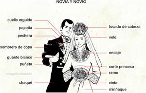 Esposos (Diccionario visual)
