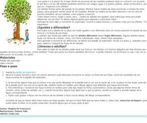 Los árboles de mi plaza: iguales pero diferentes