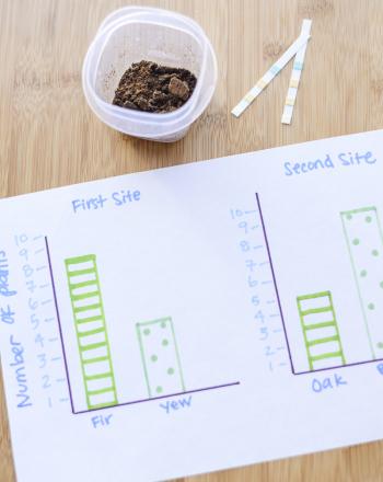Plants and Soil Acidity