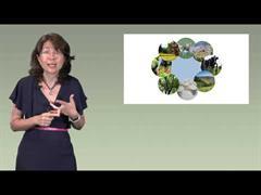 A propiedade comunal como motor de desenvolvemento rural