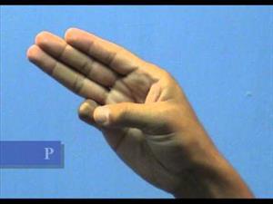 Aprende el abecedario en Lengua de Señas Venezolanas LSV