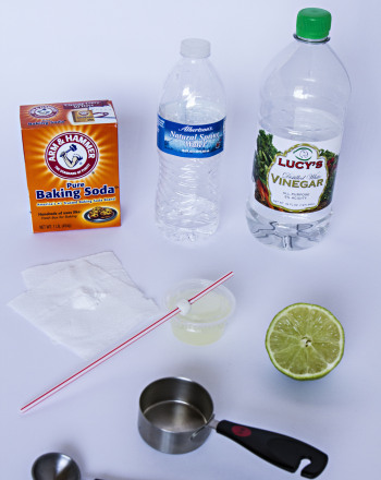The Limewater Carbon Dioxide Test