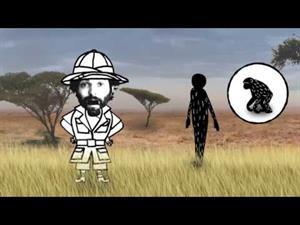 Evolución humana: del árbol al suelo
