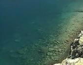 Natura. Estanys i llacunes