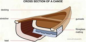 Cross section of a canoe  (Visual Dictionary)