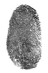 Fingerprint Findings