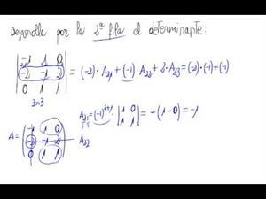 Determinante 3x3 (Desarrollo por una fila)
