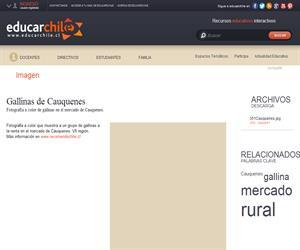 Gallinas de Cauquenes (Educarchile)