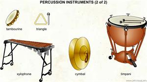 Percussion instruments (2 of 2)  (Visual Dictionary)