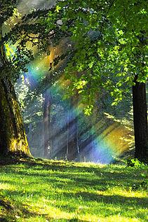 Fabrica un arcoiris