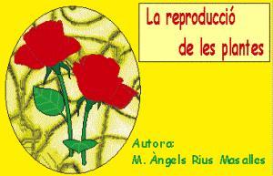 La reproducción de las plantas