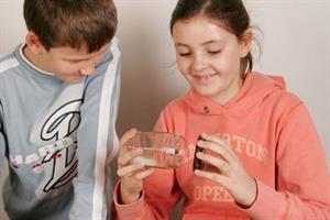 Hacer crecer semillas: experimento para niños