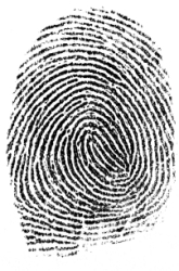 Fingerprints?  Do Parents and Children Share Similar Components and Patterns?