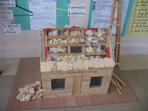 De la découverte des isolants thermiques à la conception et la réalisation d'une maquette d'éco-maison