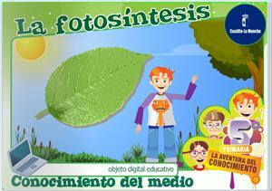 La fotosíntesis (Cuadernia)