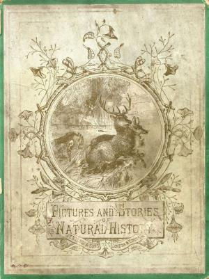 Pictures and stories of natural history (International Children's Digital Library)
