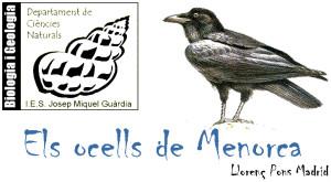 Els ocells de Menorca