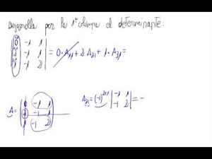 Determinante 3x3 (Desarrollo por una columna)