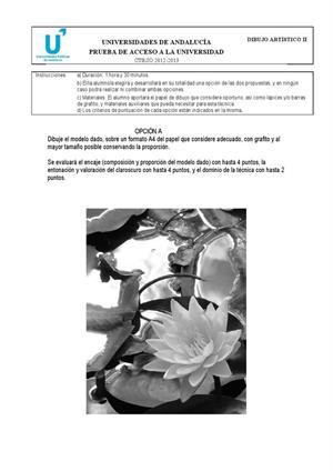 Examen de Selectividad: Dibujo artístico. Andalucía. Convocatoria Junio 2013