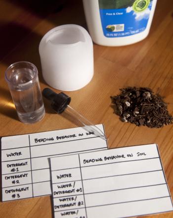 Washing Detergent & Hydrophobic Soil