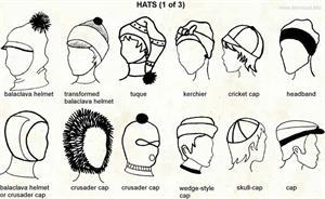 Hats  (Visual Dictionary)