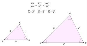 Teoremas de Tales y de Pitágoras: Geometría