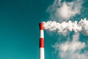 Cómo hacer visible la suciedad en el aire. Experimento de Medio Ambiente para niños de 4 a 7 años
