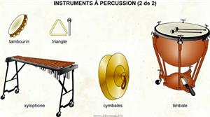 Instruments à percussion 2 (Dictionnaire Visuel)