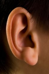 Visual and Auditory Learning Modes: Which is Better and for Whom?