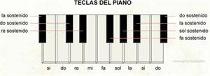 Teclas del piano (Diccionario visual)