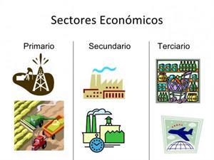 Sector primario, secundario y terciario: ejemplos