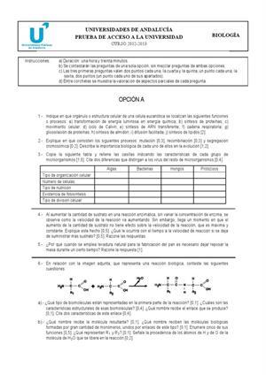 Examen de Selectividad: Biología. Andalucía. Convocatoria Junio 2013