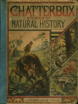 Chatterbox stories of natural history (International Children's Digital Library)