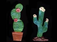 Suculentas.es, plantas suculentas y Cactus