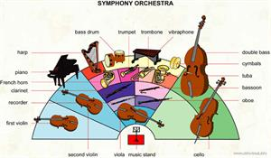 Symphony orchestra  (Visual Dictionary)