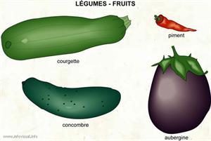 Légume (Dictionnaire Visuel)