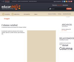 Columna vertebral (Educarchile)