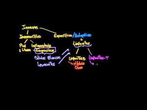 Tipos de respuestas inmunes innatas y adaptivas. Respuesta humoral vs respuesta celular mediada (Khan Academy Español)