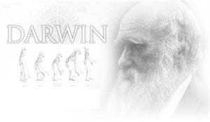 Darwin, el padre de la evolución