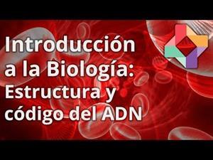 Estructura y código del ADN