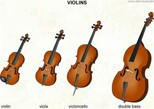 Violins  (Visual Dictionary)