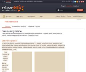 Sistema respiratorio (Educarchile)