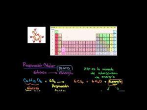 Introducción a la respiración celular (Khan Academy Español)