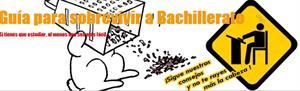Guía para sobrevivir a Bachillerato: el blog de un alumno de bachillerato