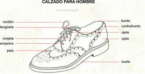 Calzado para hombre (Diccionario visual)