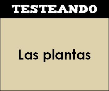 Las plantas. 5º Primaria - Conocimiento del medio (Testeando)